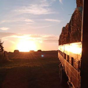 Sonnenuntergang Strohballen